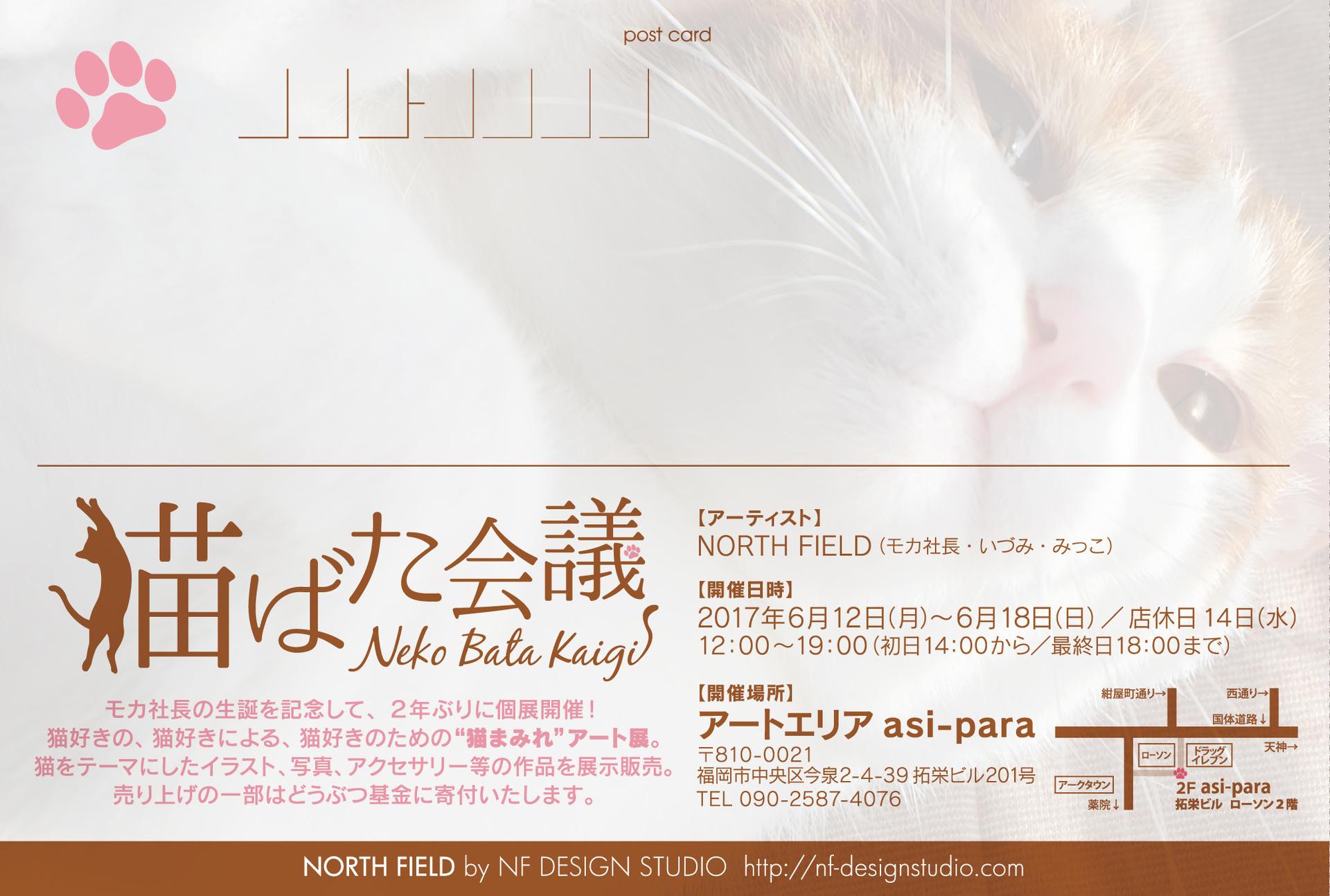 17.04_猫ばた会議DM_ウラ.jpg